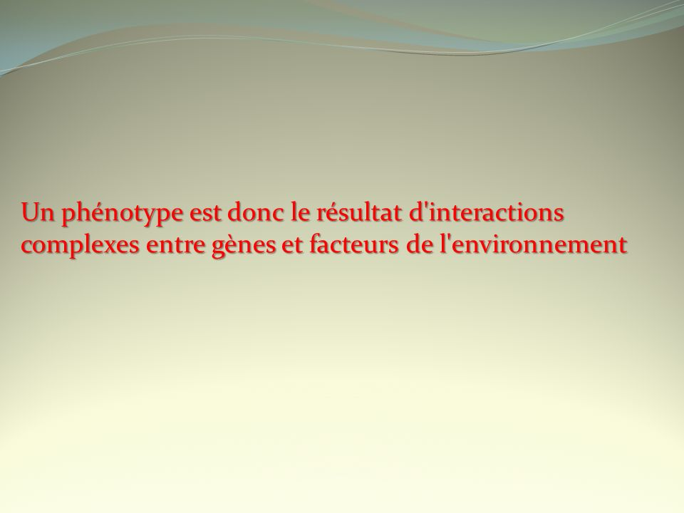 Un phénotype est donc le résultat d'interactions complexes entre gènes et facteurs de l'environnement