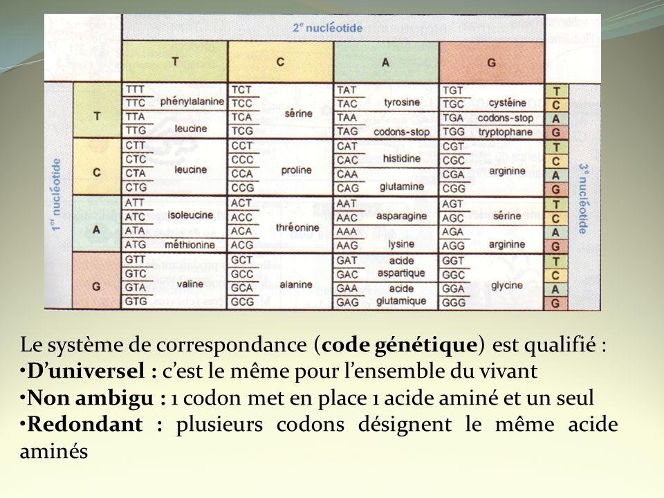 Le système de correspondance (code génétique) est qualifié : Duniversel : cest le même pour lensemble du vivant Non ambigu : 1 codon met en place 1 ac