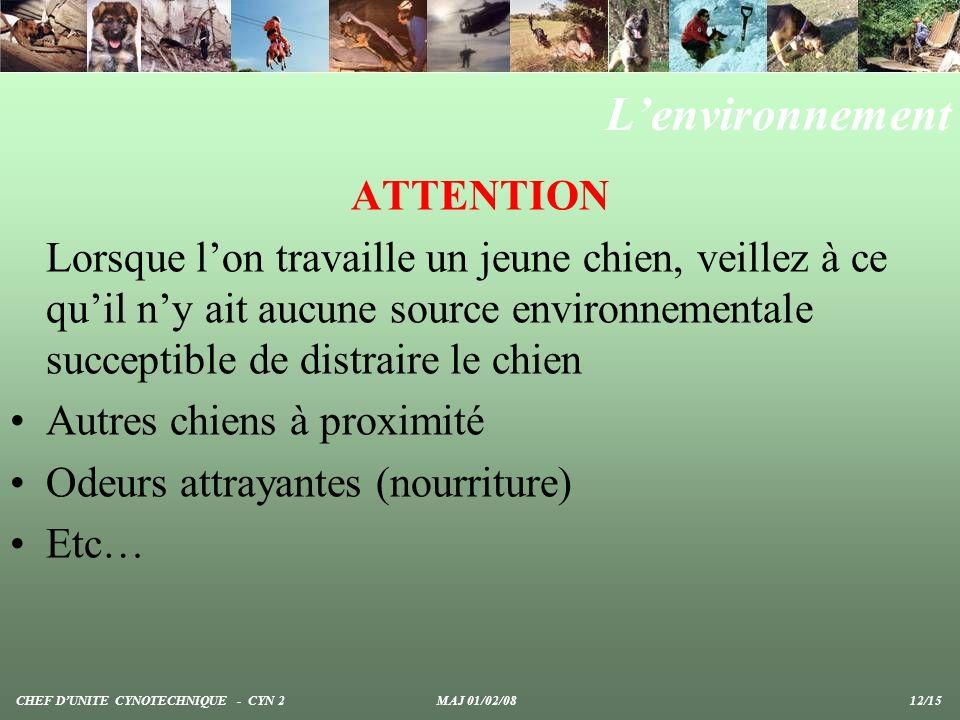 Lenvironnement ATTENTION Lorsque lon travaille un jeune chien, veillez à ce quil ny ait aucune source environnementale succeptible de distraire le chien Autres chiens à proximité Odeurs attrayantes (nourriture) Etc… CHEF DUNITE CYNOTECHNIQUE - CYN 2 MAJ 01/02/08 12/15