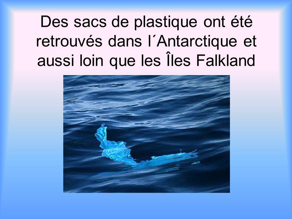 Des sacs de plastique ont été retrouvés dans l´Antarctique et aussi loin que les Îles Falkland