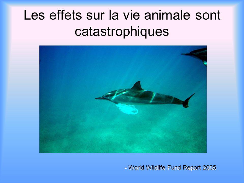 Les effets sur la vie animale sont catastrophiques - World Wildlife Fund Report 2005