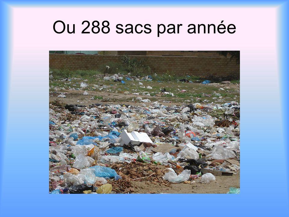 Ou 288 sacs par année