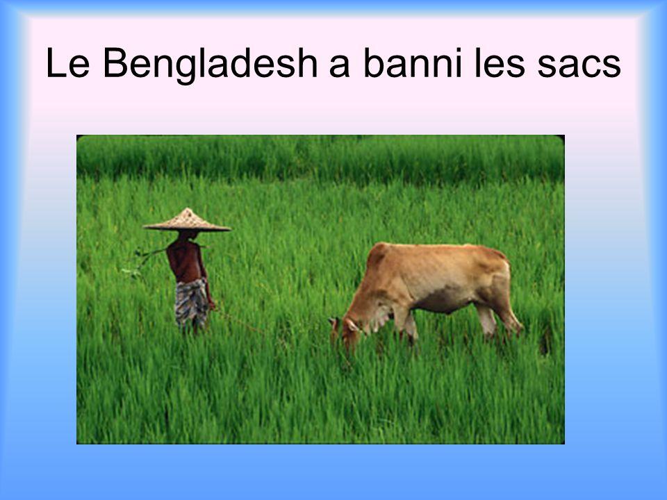 Le Bengladesh a banni les sacs