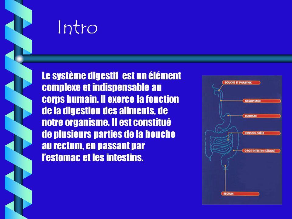 Intro Le système digestif est un élément complexe et indispensable au corps humain. Il exerce la fonction de la digestion des aliments, de notre organ