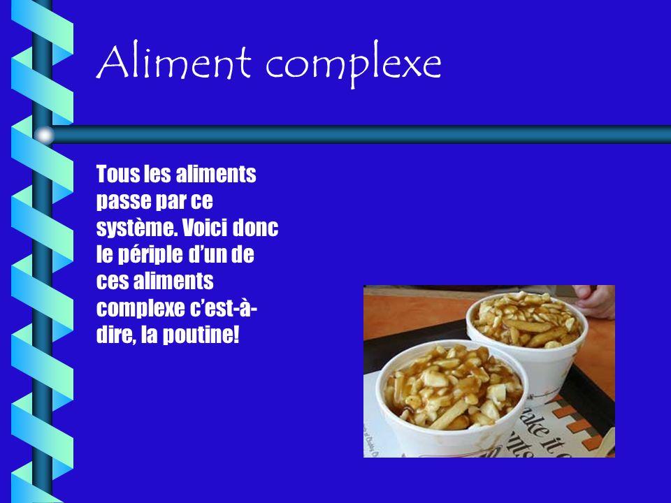 Aliment complexe Tous les aliments passe par ce système. Voici donc le périple dun de ces aliments complexe cest-à- dire, la poutine!