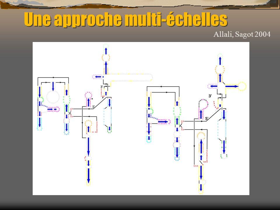 Une approche multi-échelles Allali, Sagot 2004