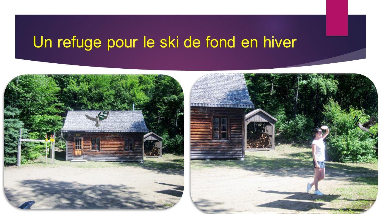 Un refuge pour le ski de fond en hiver