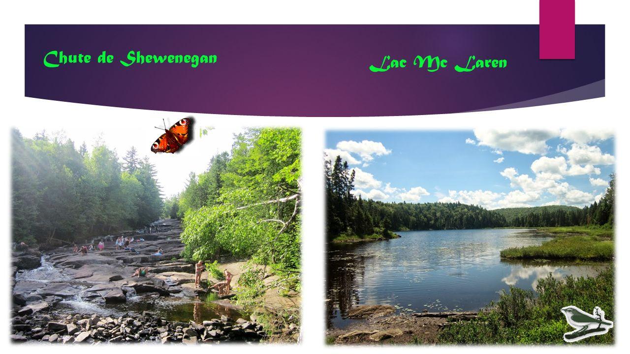 Chute de Shewenegan Lac Mc Laren