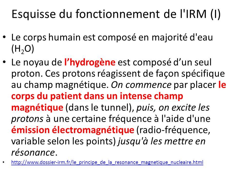 Esquisse du fonctionnement de l'IRM (I) Le corps humain est composé en majorité d'eau (H 2 O) Le noyau de lhydrogène est composé dun seul proton. Ces