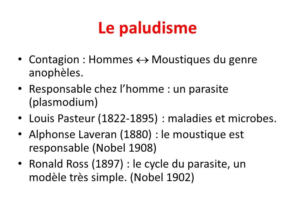 Le paludisme Contagion : Hommes Moustiques du genre anophèles. Responsable chez lhomme : un parasite (plasmodium) Louis Pasteur (1822-1895) : maladies