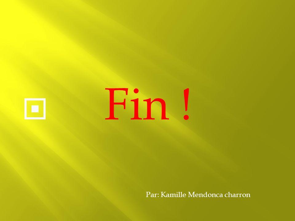 Fin ! Par: Kamille Mendonca charron