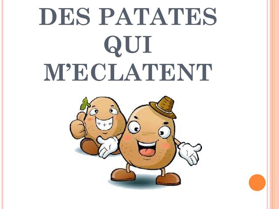 DES PATATES QUI MECLATENT
