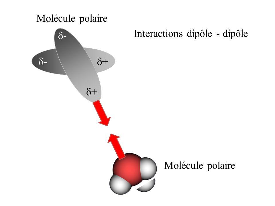 + - - + Interactions dipôle - dipôle Molécule polaire