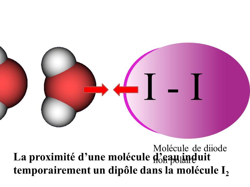 I - I Molécule de diiode non polaire La proximité dune molécule deau induit temporairement un dipôle dans la molécule I 2