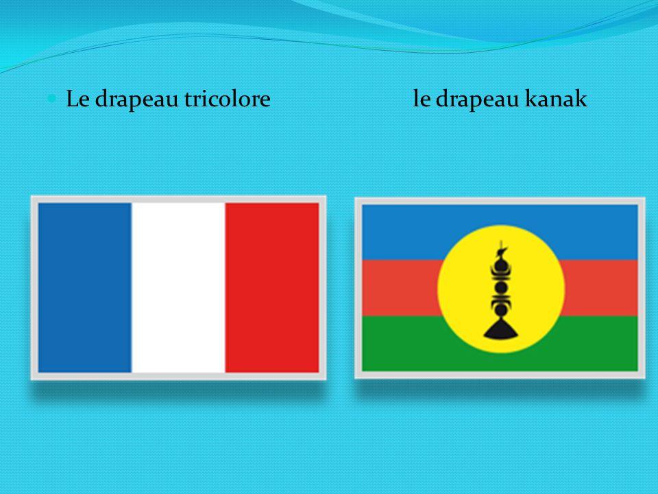 Le drapeau tricolore le drapeau kanak