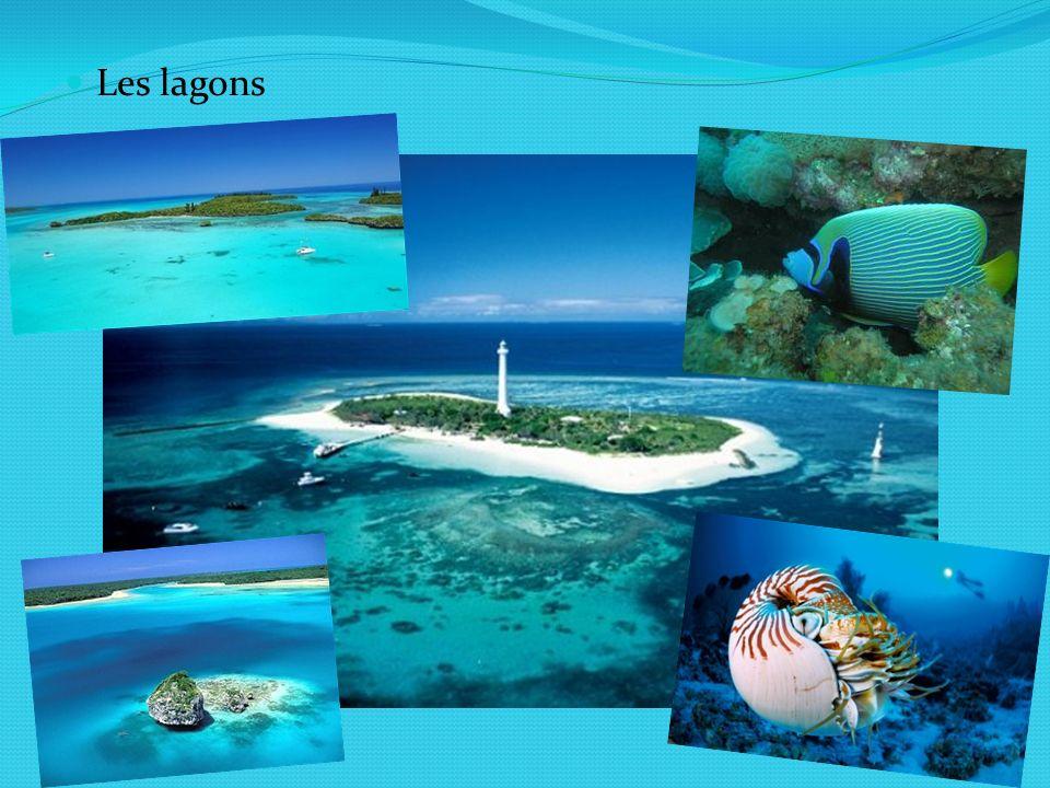 Les lagons