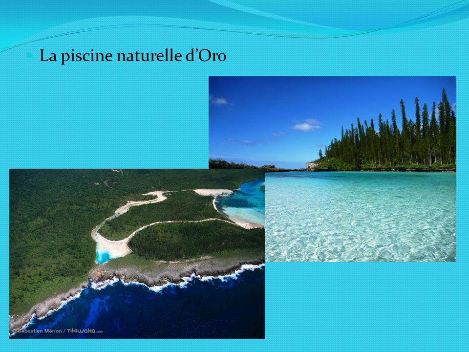 La piscine naturelle dOro