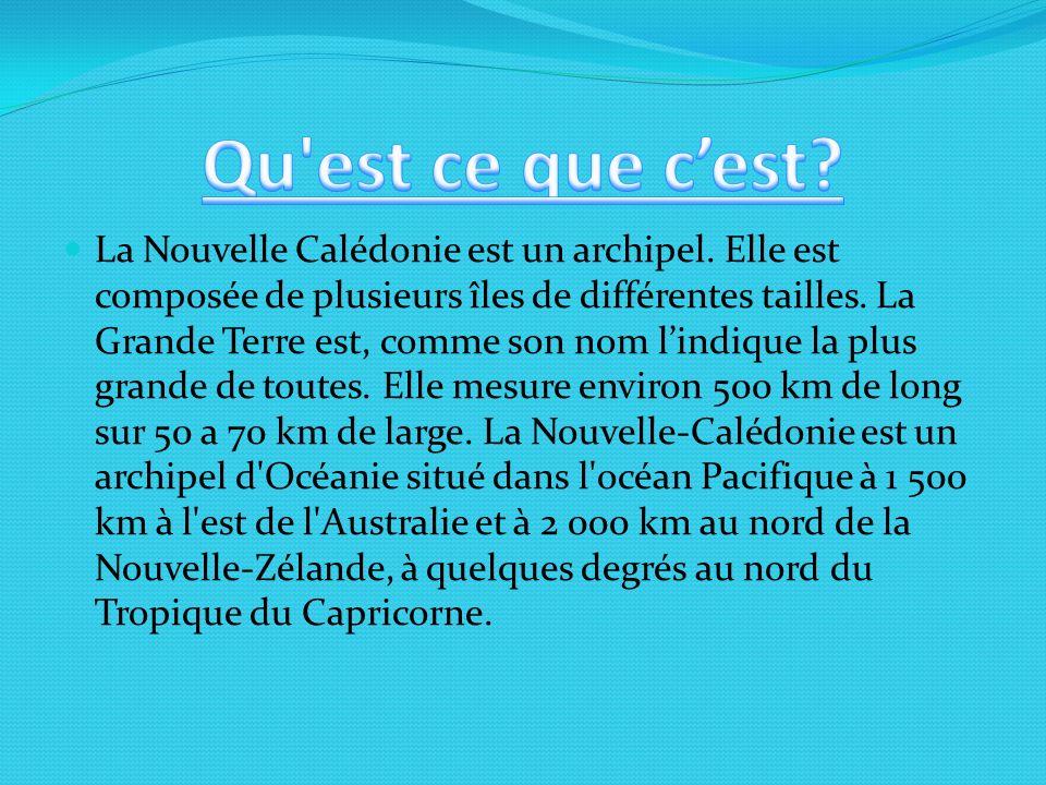 La Nouvelle Calédonie est un archipel.Elle est composée de plusieurs îles de différentes tailles.