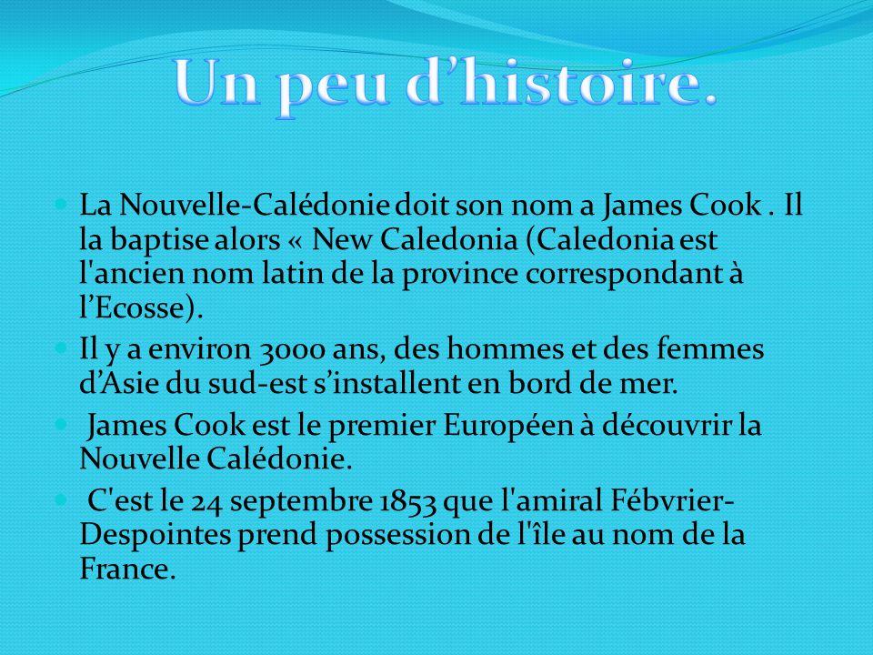 La Nouvelle-Calédonie doit son nom a James Cook. Il la baptise alors « New Caledonia (Caledonia est l'ancien nom latin de la province correspondant à