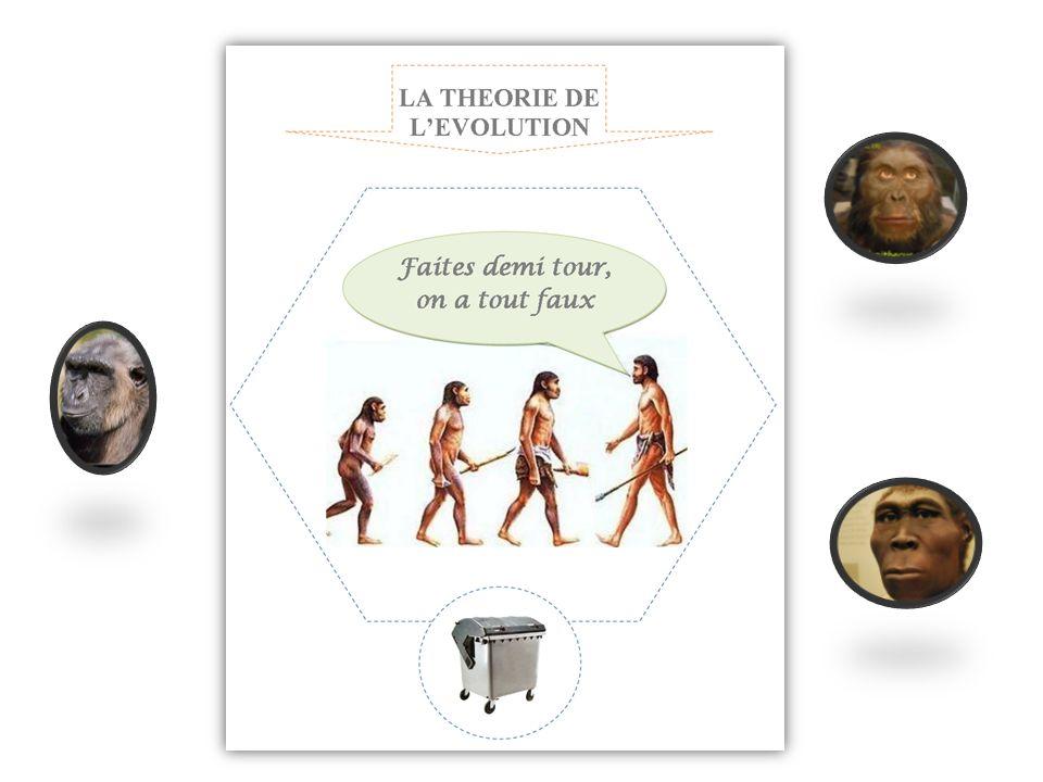 Voici vos ancêtres, Selon la théorie de lévolution 1.