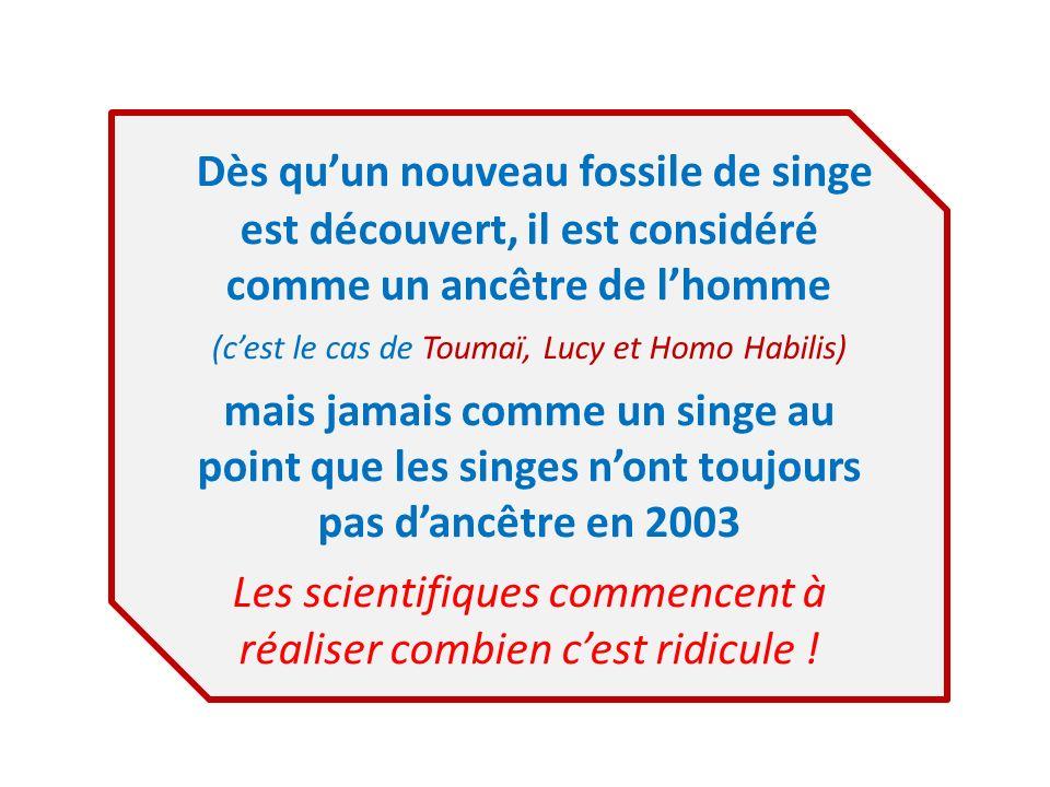 Dès quun nouveau fossile de singe est découvert, il est considéré comme un ancêtre de lhomme (cest le cas de Toumaï, Lucy et Homo Habilis) mais jamais