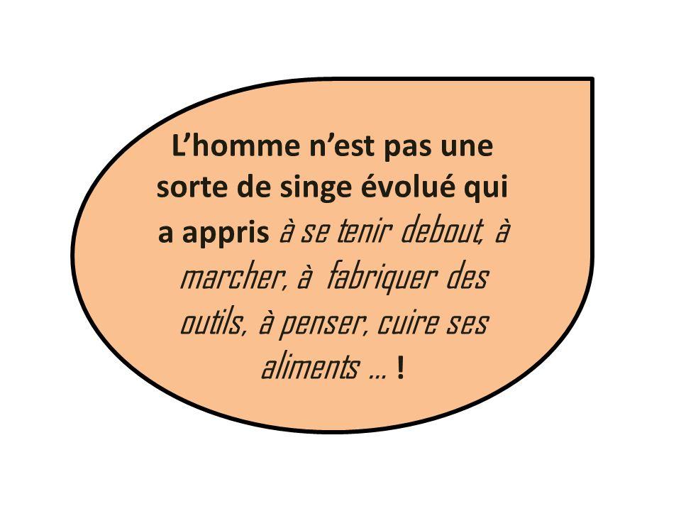 Lhomme nest pas une sorte de singe évolué qui a appris à se tenir debout, à marcher, à fabriquer des outils, à penser, cuire ses aliments … !
