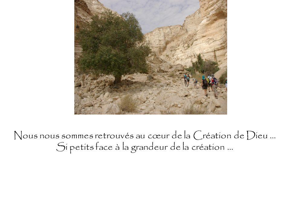 Nous nous sommes retrouvés au cœur de la Création de Dieu … Si petits face à la grandeur de la création …