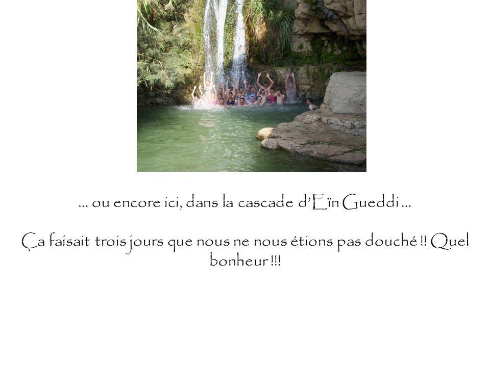 … ou encore ici, dans la cascade dEïn Gueddi … Ça faisait trois jours que nous ne nous étions pas douché !! Quel bonheur !!!