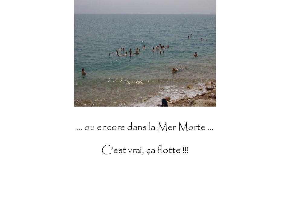 … ou encore dans la Mer Morte … Cest vrai, ça flotte !!!