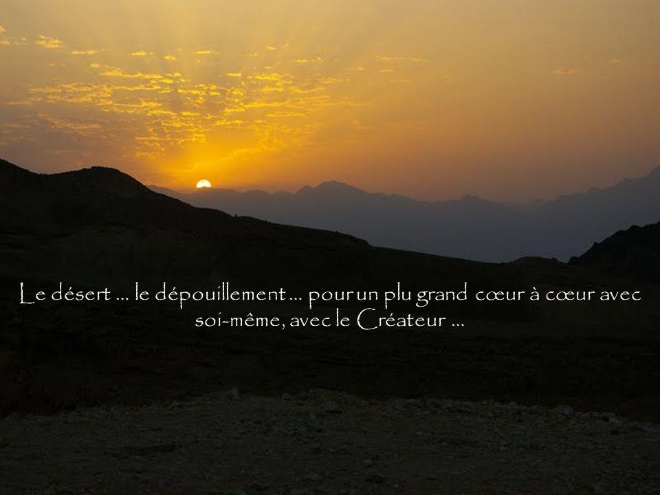 Le désert … le dépouillement … pour un plu grand cœur à cœur avec soi-même, avec le Créateur …