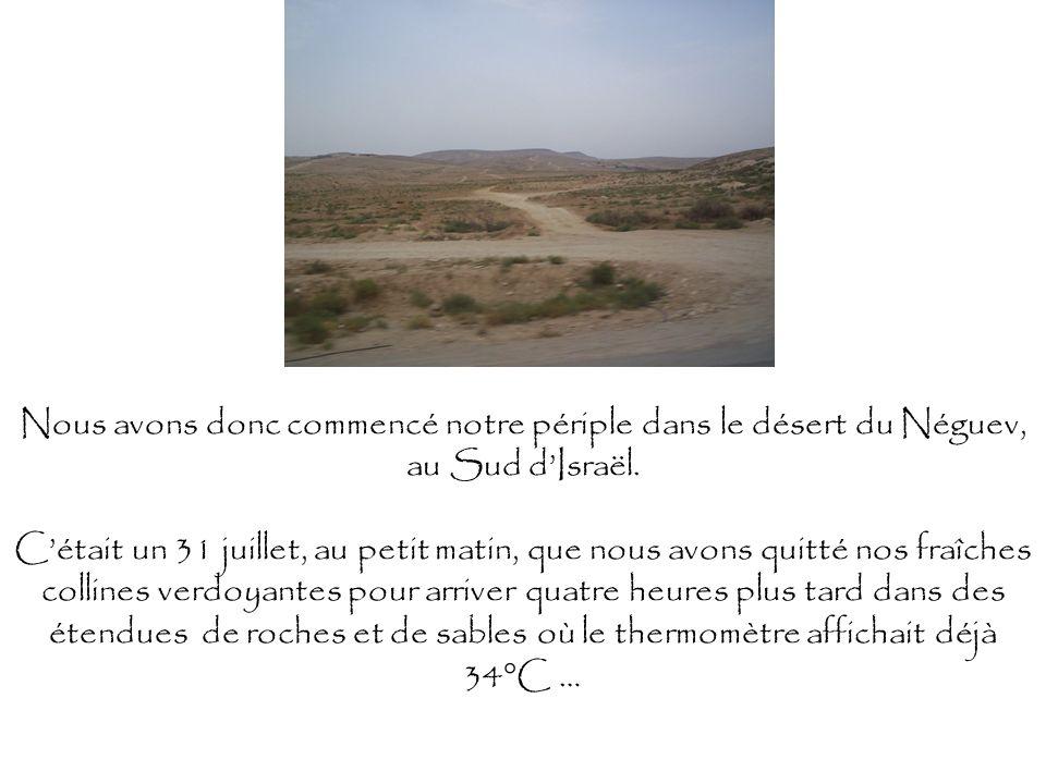 Nous avons donc commencé notre périple dans le désert du Néguev, au Sud dIsraël. Cétait un 31 juillet, au petit matin, que nous avons quitté nos fraîc