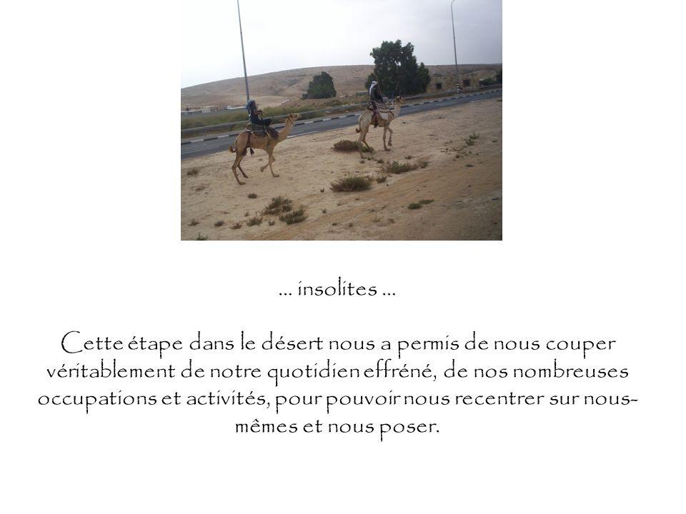… insolites … Cette étape dans le désert nous a permis de nous couper véritablement de notre quotidien effréné, de nos nombreuses occupations et activ