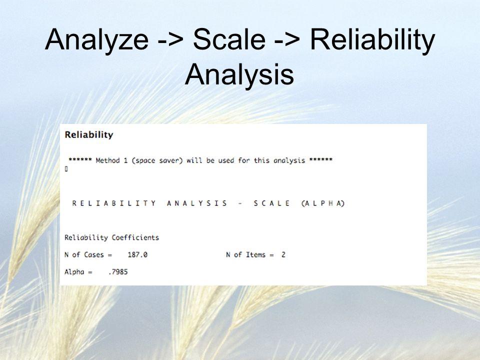 Analyze -> Scale -> Reliability Analysis