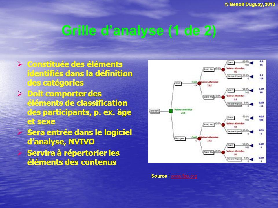 © Benoit Duguay, 2013 Grille danalyse (1 de 2) Constituée des éléments identifiés dans la définition des catégories Doit comporter des éléments de classification des participants, p.