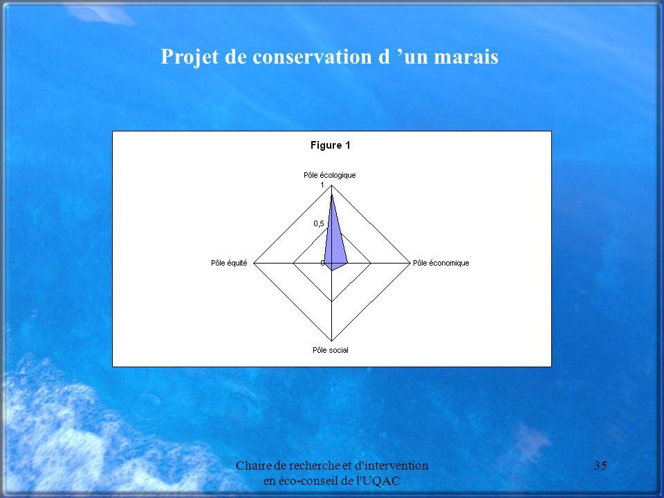 Chaire de recherche et d intervention en éco-conseil de l UQAC 35 Projet de conservation d un marais