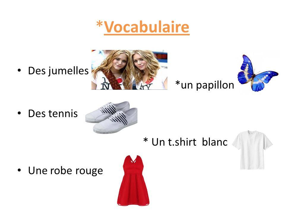 *Vocabulaire Des jumelles *un papillon Des tennis * Un t.shirt blanc Une robe rouge