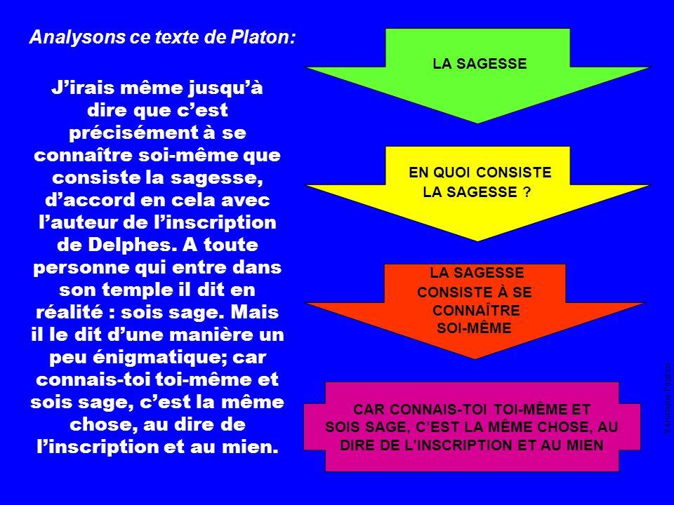 Véronique Pageau THÈME PROBLÉMATIQUE THÈSE ARGUMENTAIRE Concept principal Concept principal Définitions des concepts Concepts principaux