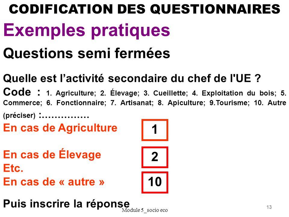 13 CODIFICATION DES QUESTIONNAIRES Exemples pratiques Module 5_socio eco Questions semi fermées Quelle est lactivité secondaire du chef de l UE .
