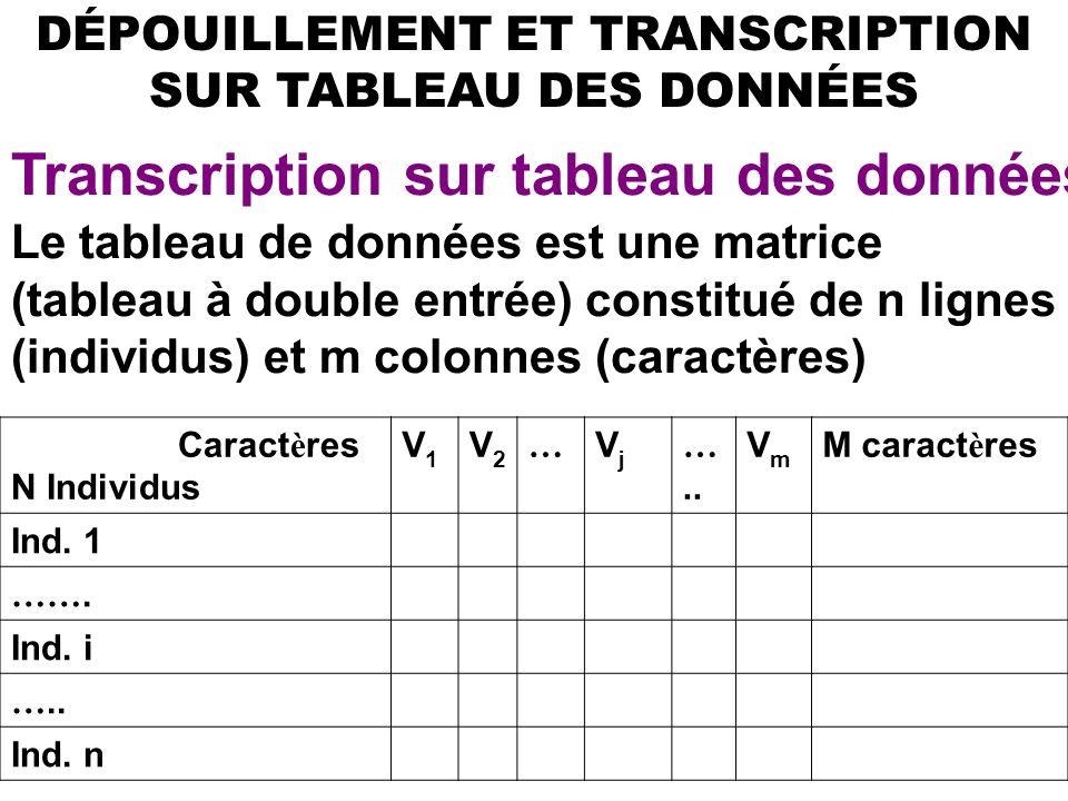 17 DÉPOUILLEMENT ET TRANSCRIPTION SUR TABLEAU DES DONNÉES Transcription sur tableau des données Le tableau de données est une matrice (tableau à double entrée) constitué de n lignes (individus) et m colonnes (caractères) Caract è res N Individus V1V1 V2V2 … VjVj …..