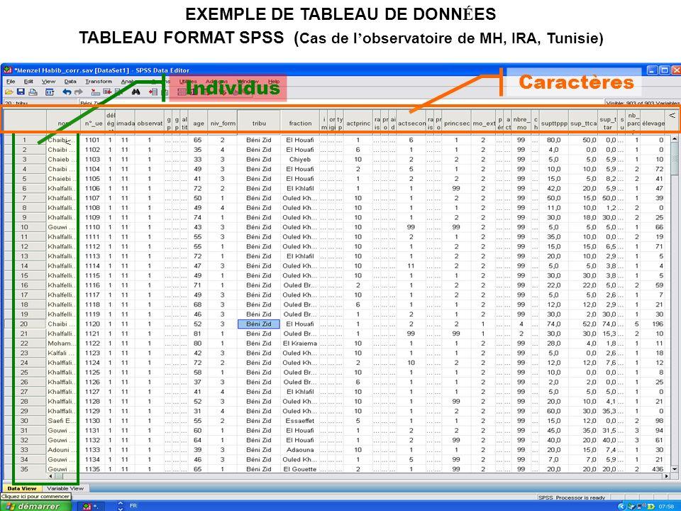 21 EXEMPLE DE TABLEAU DE DONN É ES TABLEAU FORMAT SPSS ( Cas de l observatoire de MH, IRA, Tunisie) Individus < Caractères <