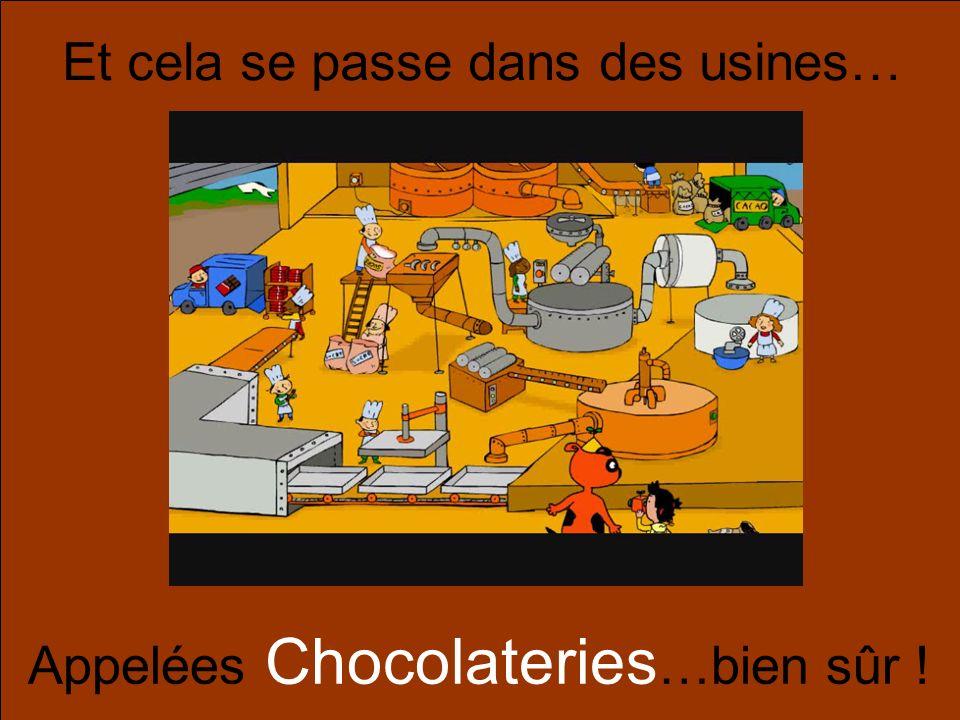 Et cela se passe dans des usines… Appelées Chocolateries …bien sûr !