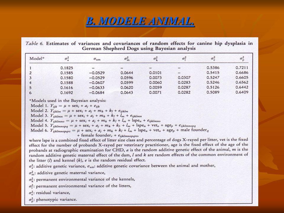 B. MODELE ANIMAL.