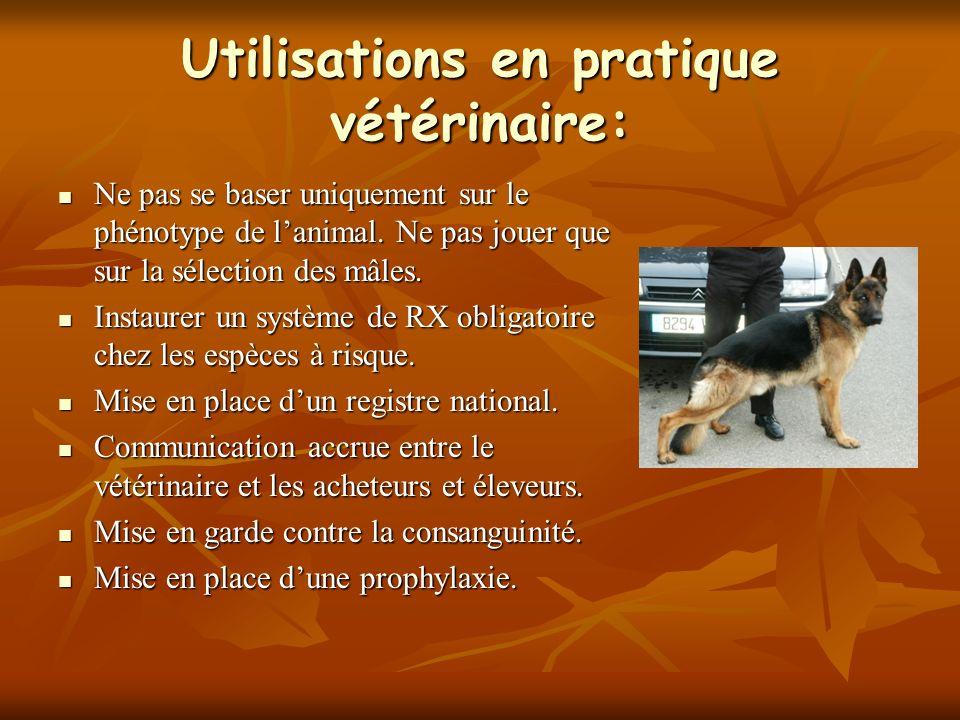 Utilisations en pratique vétérinaire: Ne pas se baser uniquement sur le phénotype de lanimal. Ne pas jouer que sur la sélection des mâles. Ne pas se b