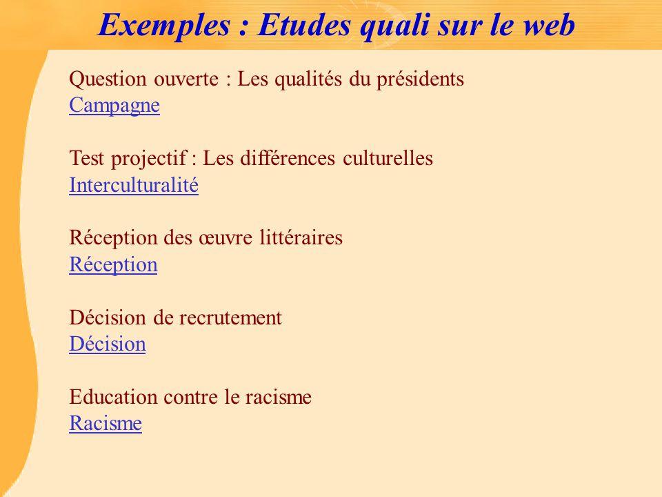 Exemples : Etudes quali sur le web Question ouverte : Les qualités du présidents Campagne Test projectif : Les différences culturelles Interculturalit