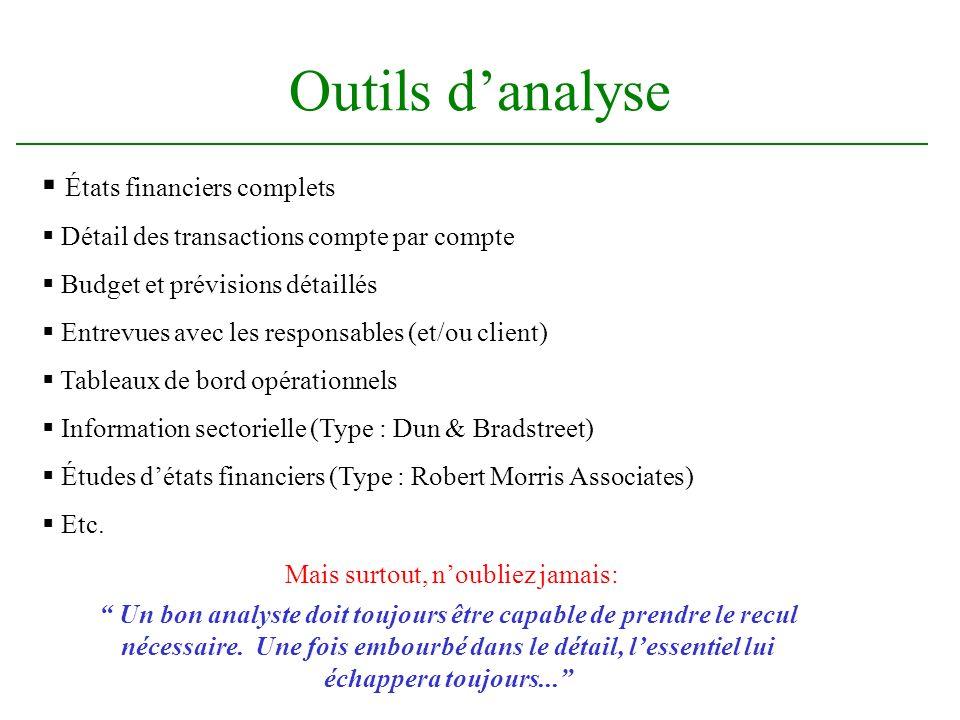 Outils danalyse États financiers complets Détail des transactions compte par compte Budget et prévisions détaillés Entrevues avec les responsables (et