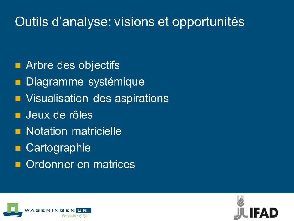 Outils danalyse: visions et opportunités Arbre des objectifs Diagramme systémique Visualisation des aspirations Jeux de rôles Notation matricielle Car