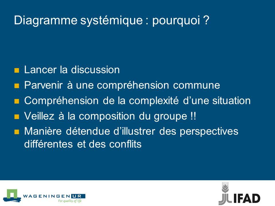 Diagramme systémique : pourquoi ? Lancer la discussion Parvenir à une compréhension commune Compréhension de la complexité dune situation Veillez à la