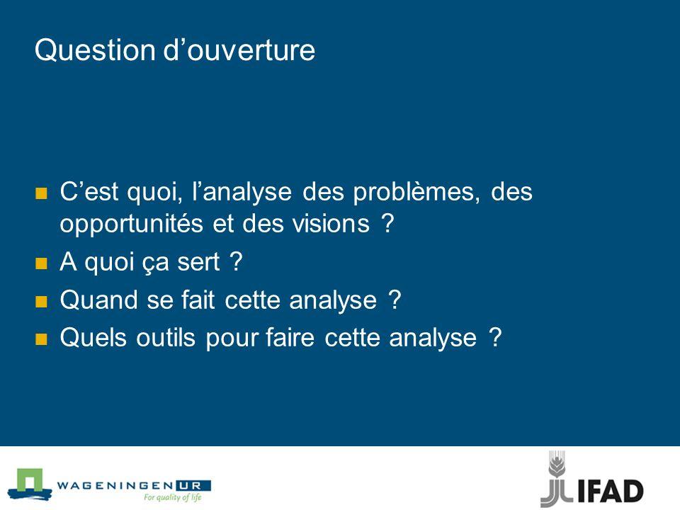 Question Analyse problèmes, questions, visions, opportunités Pourquoi est-il important de le faire ?