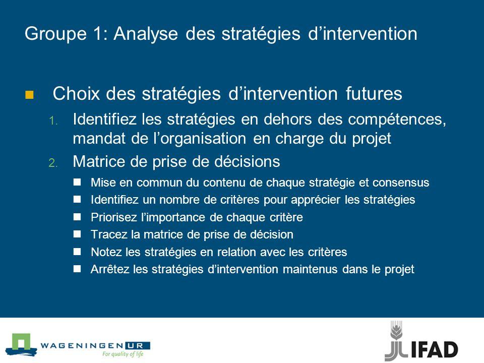 Groupe 1: Analyse des stratégies dintervention Choix des stratégies dintervention futures Identifiez les stratégies en dehors des compétences, mandat