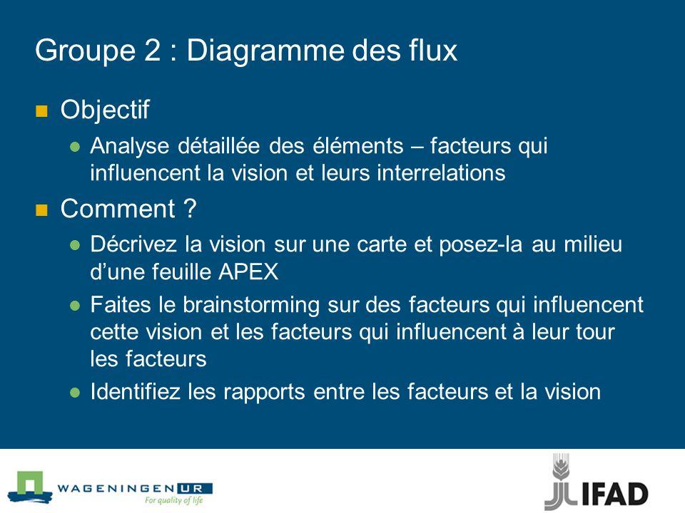 Groupe 2 : Diagramme des flux Objectif Analyse détaillée des éléments – facteurs qui influencent la vision et leurs interrelations Comment ? Décrivez